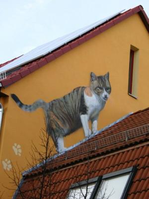Tierpraxis Altenburg